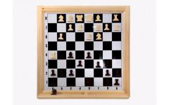 Шахматы настенные демонстрационные Орлов